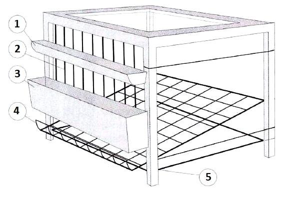 Инструкция создания клетки