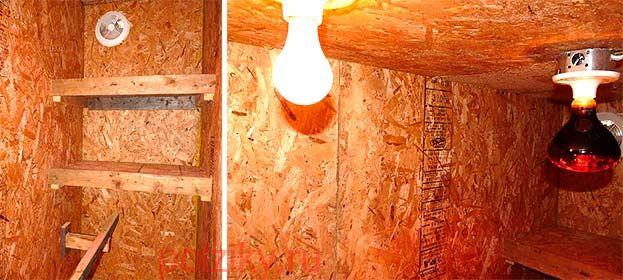 Лампа в курятнике