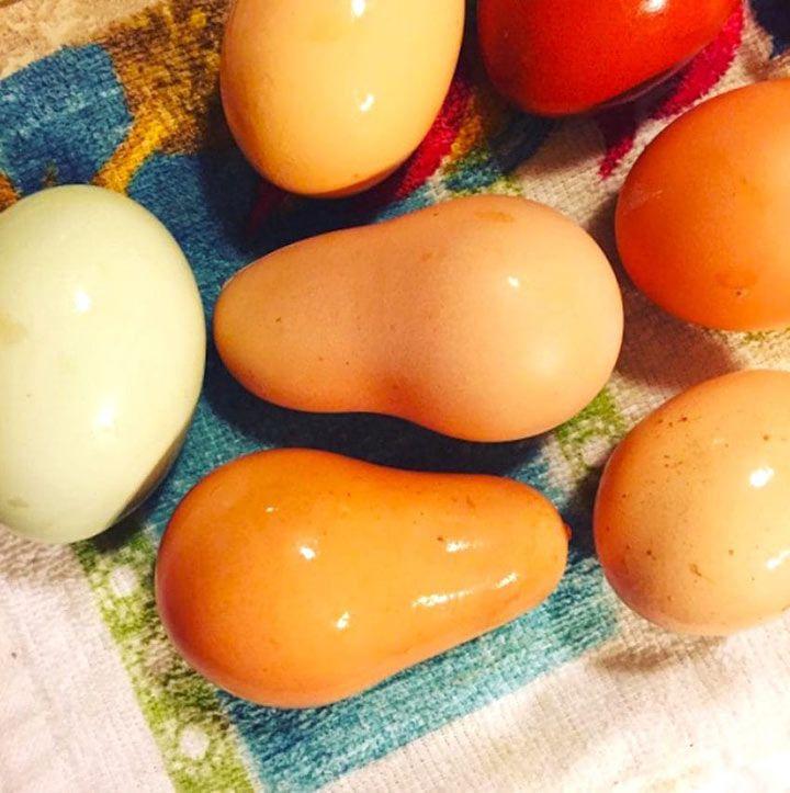 Яйца нарушенной формы