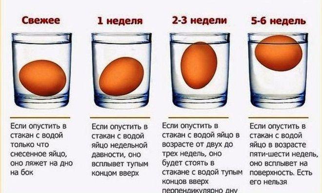 Памятка для проверки свежести яйца