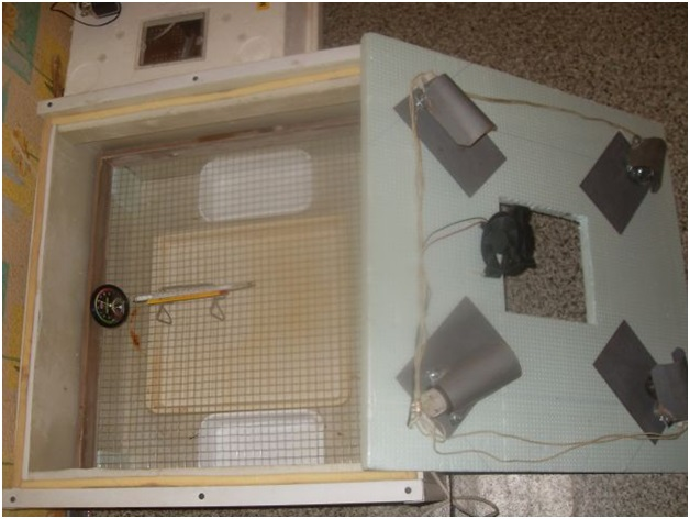 Пенопласт для инкубатора