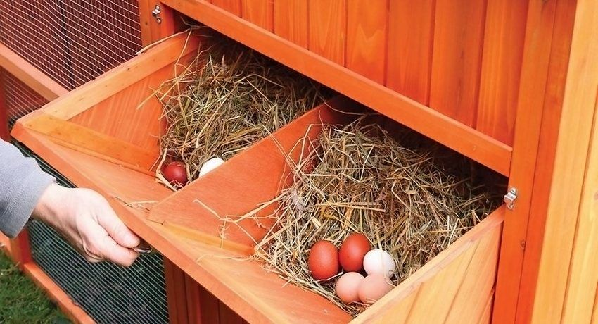 Навесные гнезда