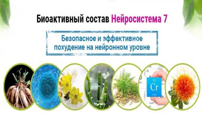 Биоактивный состав Нейросистема 7