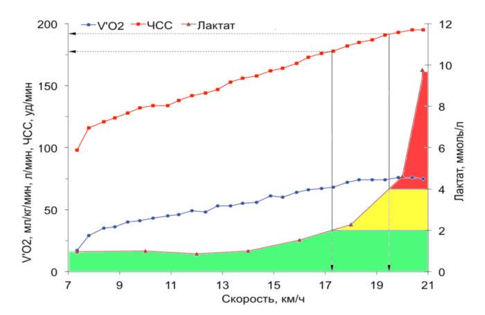 Диаграмма потребления кислорода во время нагрузки