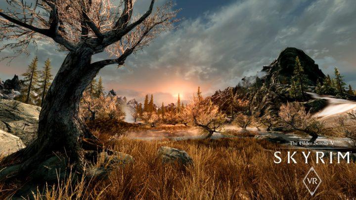 Игра Скайрим the Elder Scrolls 5