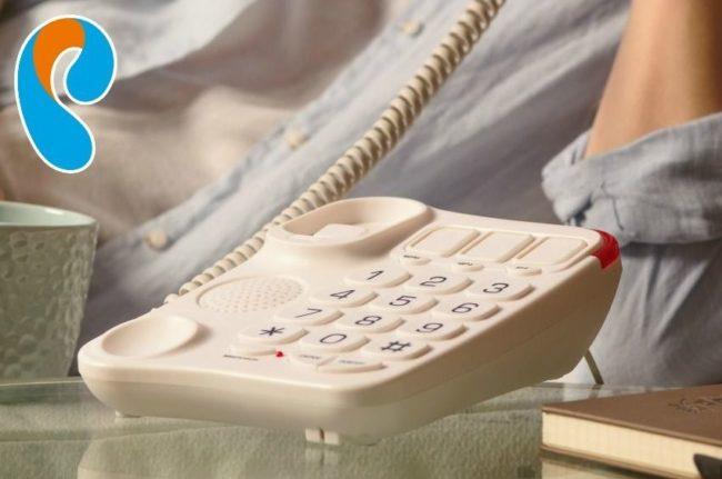 Беспланый телефон от Ростелекома