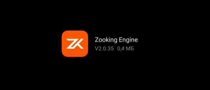 Приложение Zooking engine